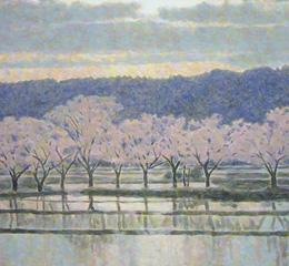 桜の季節の我が家